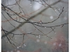 0431-a-0047-exposure_a