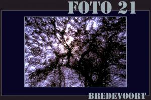 Foto 21 Bredevoort